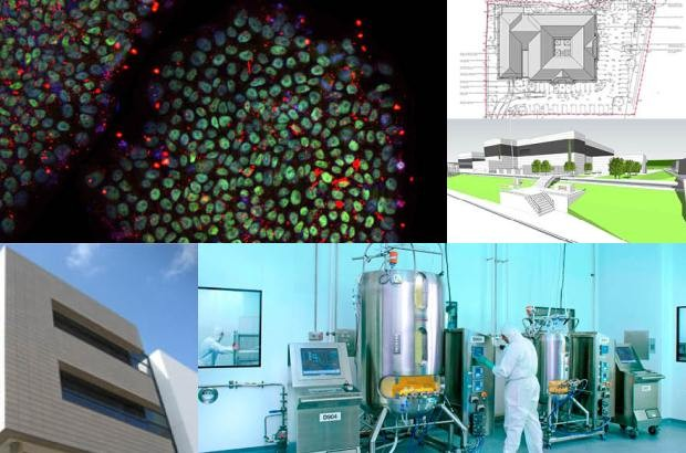 Clockwise from top left. Images courtesy of: The Cell Therapy Catapult; BTG Plc; AstraZeneca; Fujifilm Diosynth Biotechnologies; Eisai.