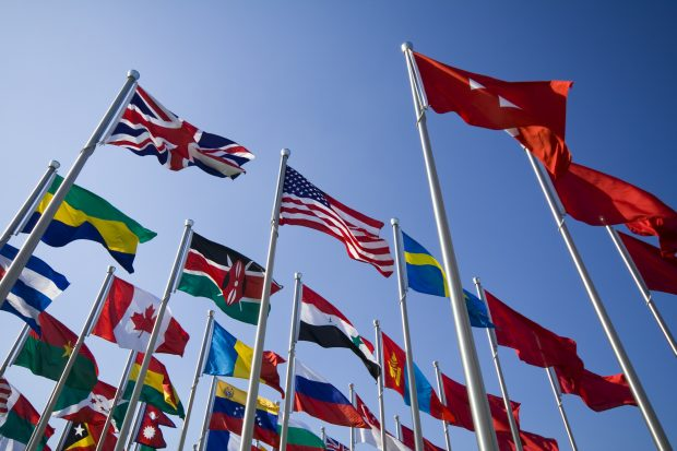 Picture of international flags on flag poles
