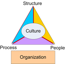 Factors such as process, people, structure and organization impacting on the company culture.