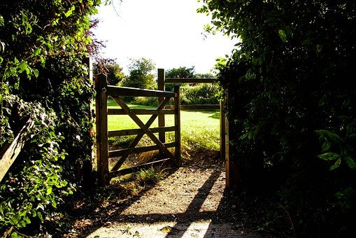 Gate opening into a sunlit field